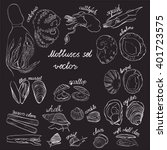 molluscs set vector...   Shutterstock .eps vector #401723575