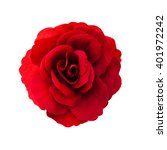 red rose flower isolated on... | Shutterstock . vector #401972242