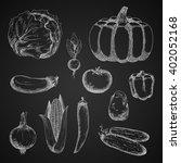 vintage vegetables sketches of... | Shutterstock .eps vector #402052168