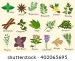 herbs  condiment and spices... | Shutterstock .eps vector #402065695