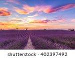 lavender field summer landscape ... | Shutterstock . vector #402397492