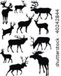 deer | Shutterstock .eps vector #40242844
