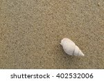 fossil shell on the sand beach  ... | Shutterstock . vector #402532006