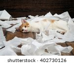 Stock photo funny kitten playing with the toilet paper on the floor kitten small fur is white with red paper 402730126
