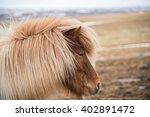 iceland horse | Shutterstock . vector #402891472