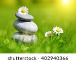 green grass with stones and...   Shutterstock . vector #402940366