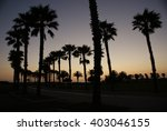 california palm trees | Shutterstock . vector #403046155