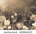 Sepia Effect Beautiful Summer...
