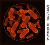 bacterium under the microscope. | Shutterstock .eps vector #403073005