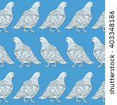 drawing vector isolated pigeons ... | Shutterstock .eps vector #403348186