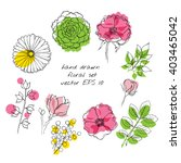 Set Of Hand Drawn Ink Floral...