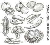 vegetables  sketches  hand... | Shutterstock .eps vector #403489522