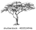 african tree  marula tree | Shutterstock .eps vector #403524946