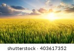 filed during bright sunset.... | Shutterstock . vector #403617352