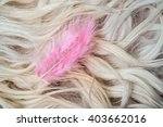 Pink Feather On A White Fur...