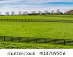 green pastures of horse farms.... | Shutterstock . vector #403709356