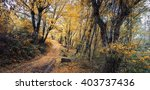 autumn forest. forest trail in... | Shutterstock . vector #403737436