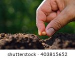 close up farmer's hand planting ... | Shutterstock . vector #403815652