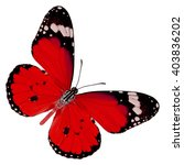 beautiful red butterfly upper... | Shutterstock . vector #403836202