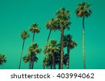 tall palm trees against sky ... | Shutterstock . vector #403994062