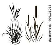 bulrush  sedge. set. silhouette.... | Shutterstock .eps vector #404135035