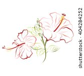 hibiscus  shoe flower  china... | Shutterstock .eps vector #404284252