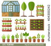 Vector Set Of Plants And Scene...