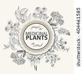 vector background with herbs in ... | Shutterstock .eps vector #404461585