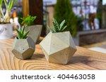 beautiful houseplants in trendy ... | Shutterstock . vector #404463058