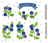 blueberry set. perfect for... | Shutterstock .eps vector #404504686