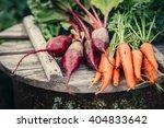fresh vegetables  carrots and...   Shutterstock . vector #404833642