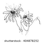 ink  pencil flower sketch. line ... | Shutterstock . vector #404878252