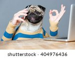 Happy Man With Pug Dog Head...