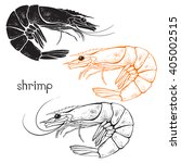 shrimps  isolated elements for... | Shutterstock .eps vector #405002515