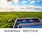 Airboat Driving In A Swamp Or...