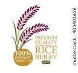 rice berry. vector illustration. | Shutterstock .eps vector #405401626