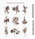 9 most poisonous plants... | Shutterstock .eps vector #405594952