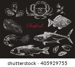 vector hand drawn seafood set   ... | Shutterstock .eps vector #405929755