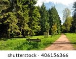 springtime walks in the woods. | Shutterstock . vector #406156366