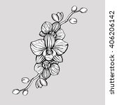 hand drawn ink floral ornament... | Shutterstock .eps vector #406206142