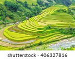 Beauty Form Terraces On Hill...