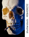 Small photo of Cranial Bone with Cigarette