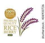rice berry. vector illustration. | Shutterstock .eps vector #406933726