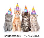 large group of small cats with... | Shutterstock . vector #407198866
