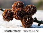 pine fir tree cones  selective... | Shutterstock . vector #407218672