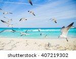 birds on the beach. soaring... | Shutterstock . vector #407219302