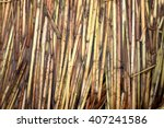 The Texture Of The Dry Reeds....