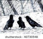 Three Crows In Snow Illustration
