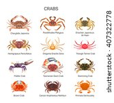 Crabs Vector Set In Flat Style...