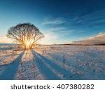 Sunbeams Breaking Through  Tree ...